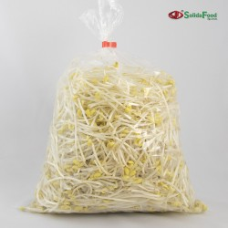 Organic Soybean Sprouts 1kg