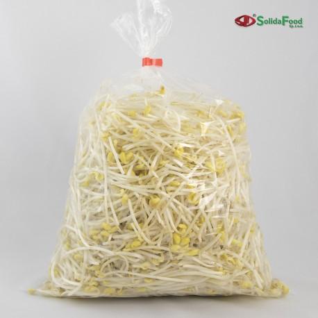 Kiełki sojowe EKO 1kg